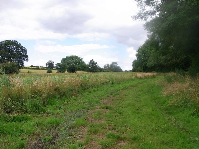 Diamond Way follows a small brook along this narrow field