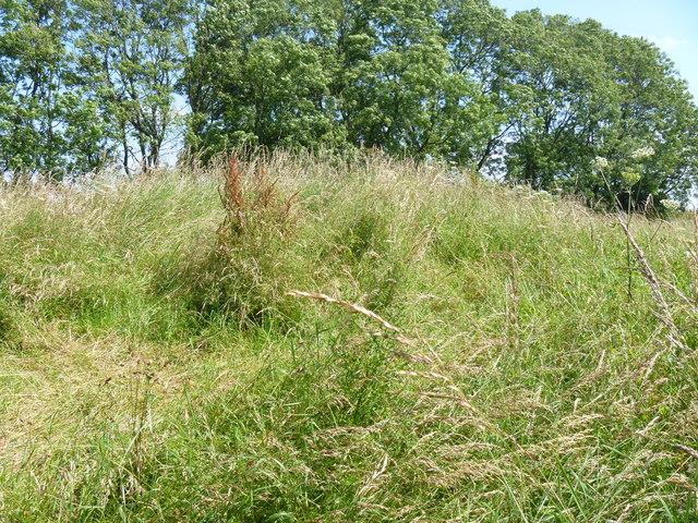 Notgrove Long Barrow [1]