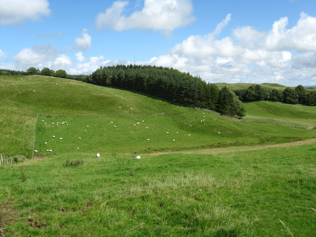 A view over the valley near Wollrig Farm
