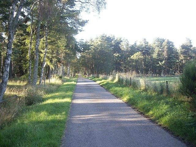 Lane from Belwade to Drumgesk.