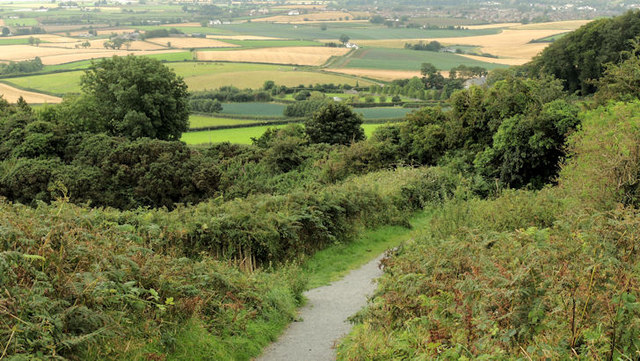 Path, Scrabo, Newtownards (1)