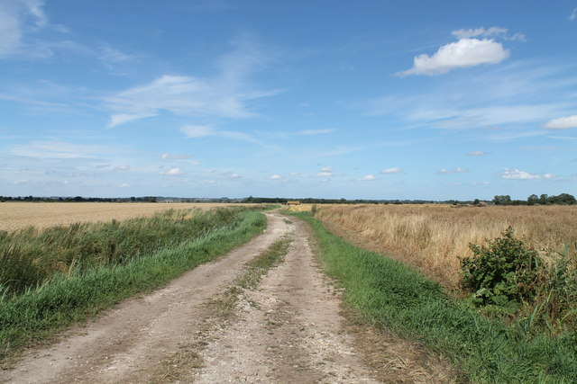 Farm Track near Decoy Farm