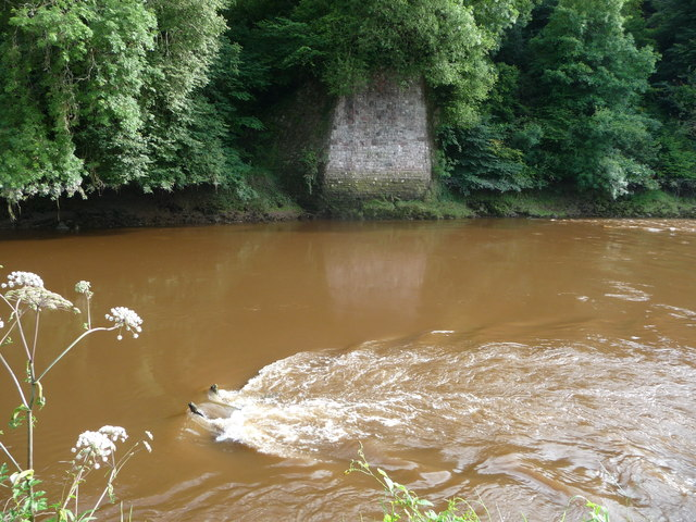 Part of the River Wye at Tintern