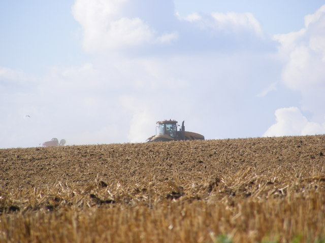 Cultivating off the B1117 Walpole Road