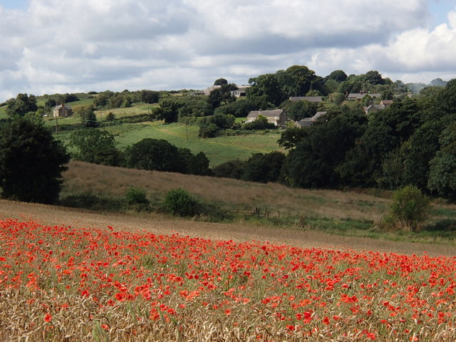 Wheat field with poppies, and view to Astwith