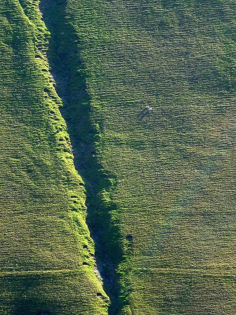 A gully on Arant Haw