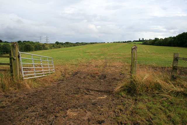 Field and gate near the A500