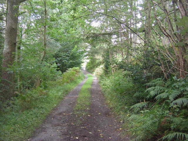 Mosser Road