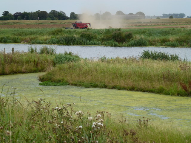 Dusty work - Combine harvester on Cowbit Wash