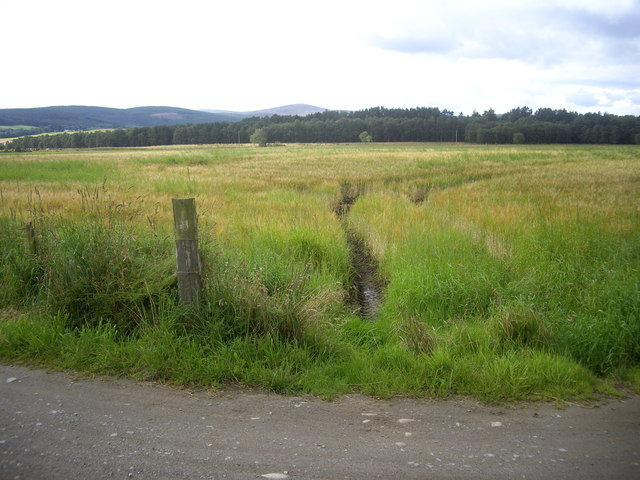 A field SE of Maryfield Farm