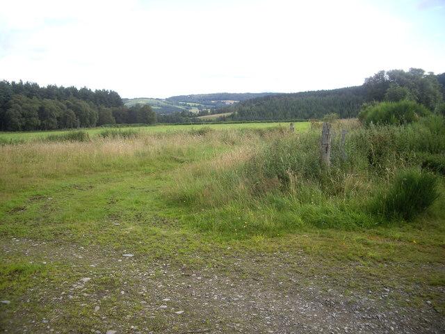 View NE from track corner