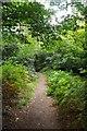 TQ4164 : The London Loop Near Keston by Glyn Baker