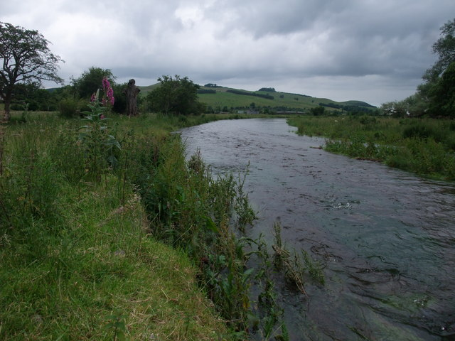 On the bank of Bowmont Water