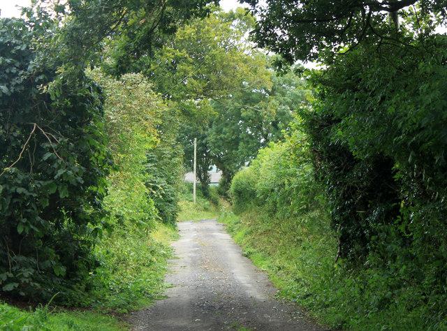 2012 : Coker's Lane