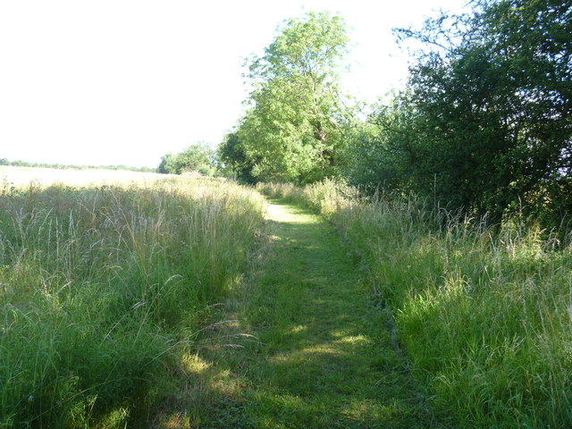 Mown path