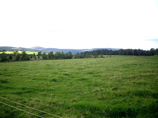 A grass field by the River Dee