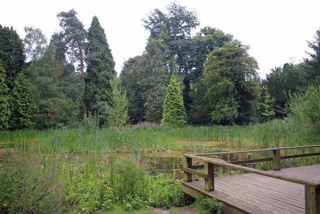 A High Elms Pond
