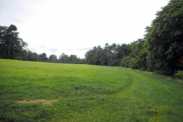The London Loop in High Elms Country park