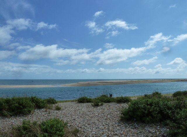 A short circular walk around Pagham (10)