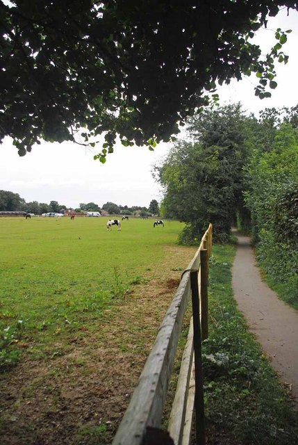 Paddock in Petts Wood