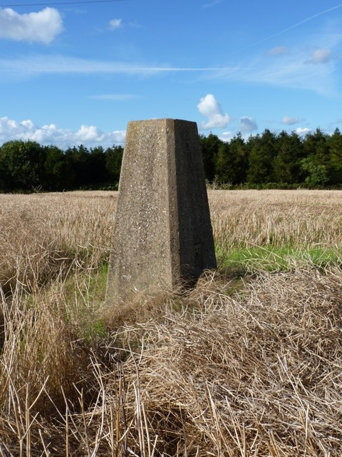 Acton Trussell trig