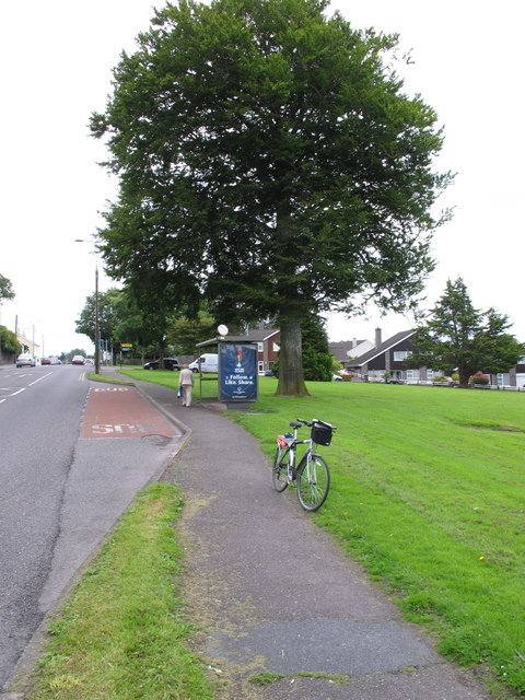 Bus stop on Bishopstown Road