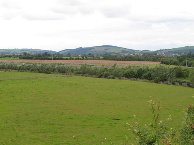 Pasture at Curraheen