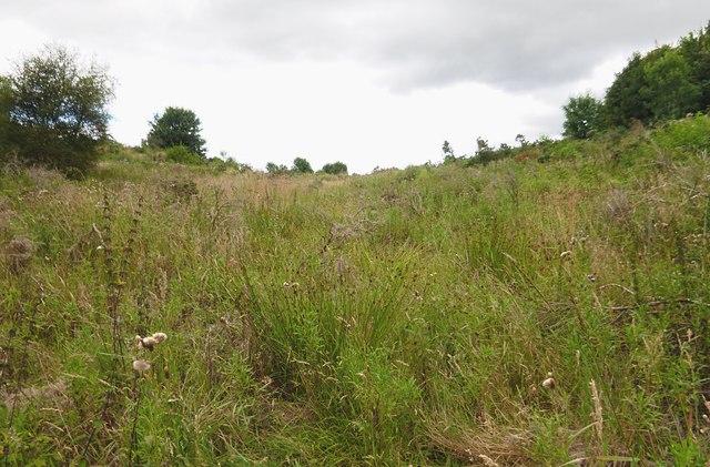Tarradale Quarry