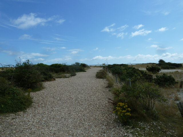 A short circular walk around Pagham (14)