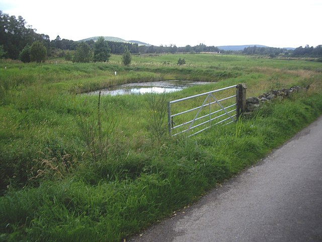 A small fish pond at Mill of Dess