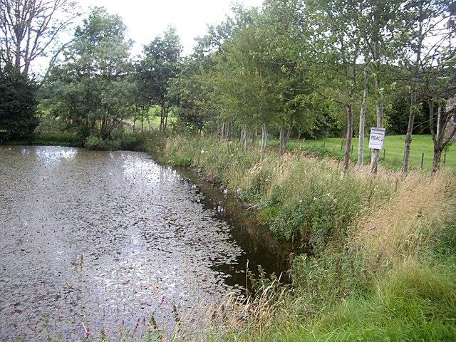 MDAC fish pond