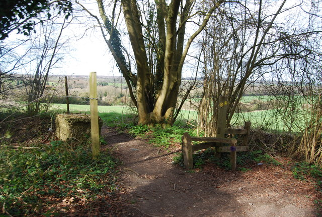 Bridleway, footpath junction, Church Wood