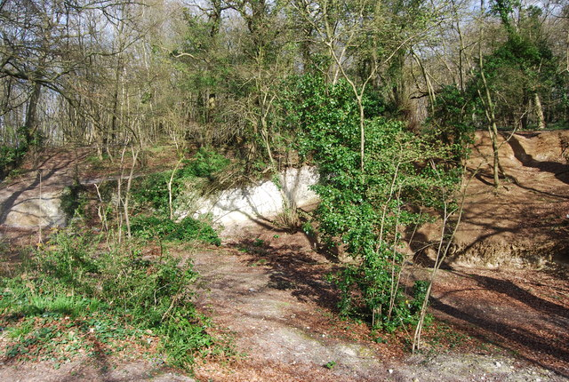 Small disused chalk quarry, Long Wood
