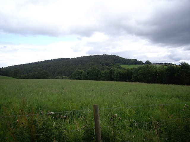 Looking westwards over the Dee valley
