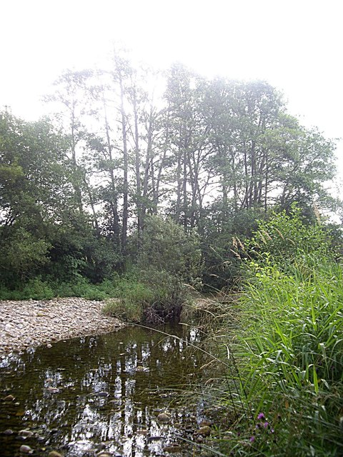 A wooded island in the Dee
