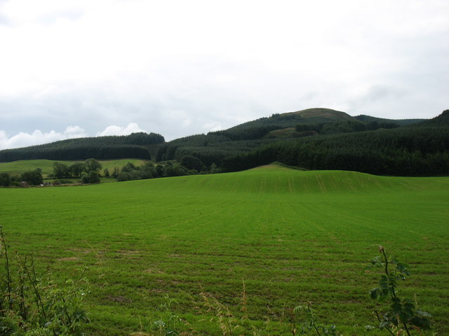 Fields at Rossie Farm