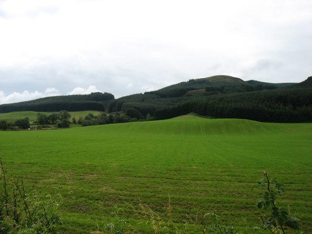 Fields at Rossie Farm