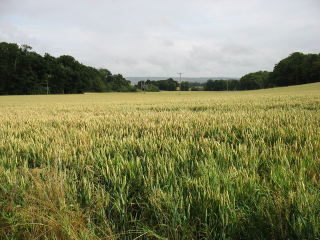 South-east of Dunning