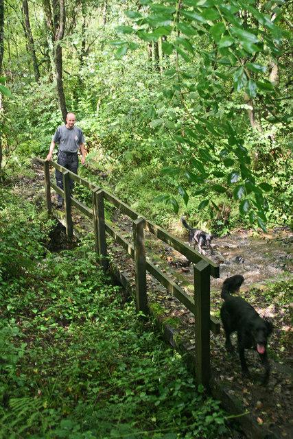 Footbridge below Hense Moor
