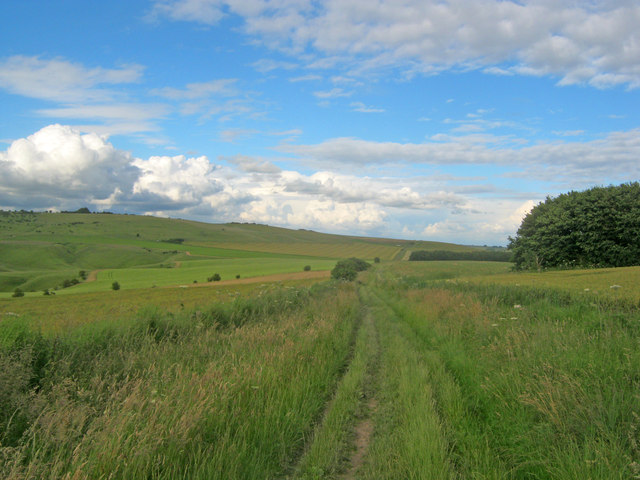 The Wessex Ridgeway on North Down