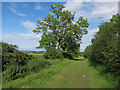 TL2455 : Byway to B1040 by Hugh Venables