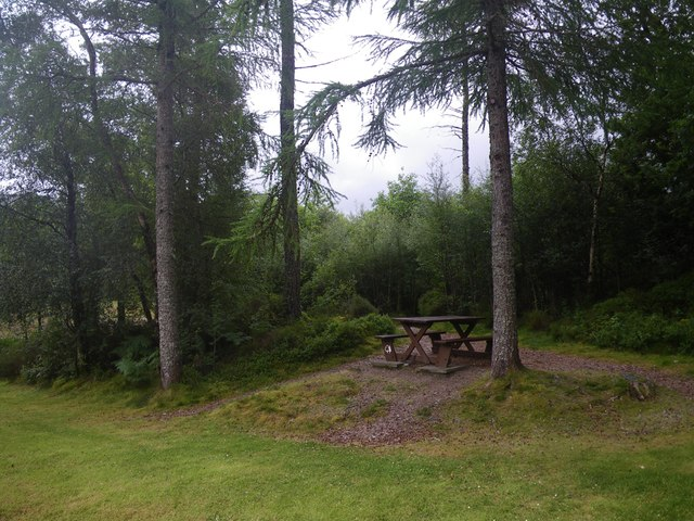 Forestry picnic area at the Ardery