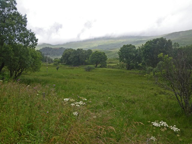 Meadow in the River Dochart watershed