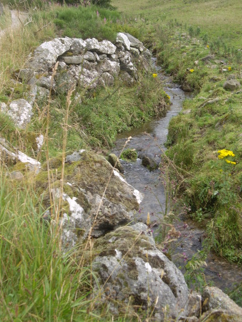 Upstream Corry Burn