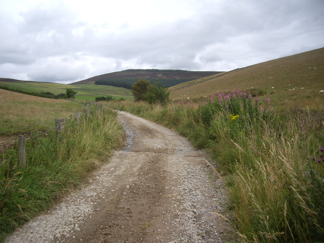 Track by Corry Burn