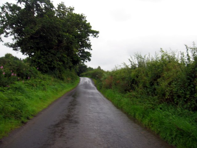 Country lane heading south past the Hag Plantation