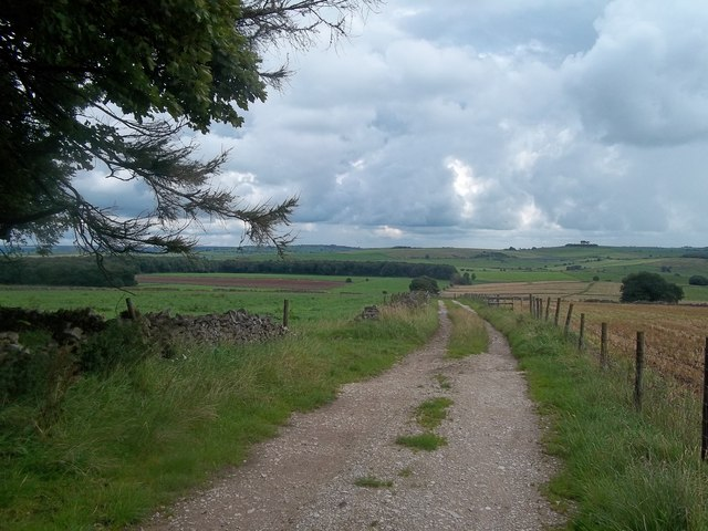 Track and Byway to the East of Uppermoor Farm