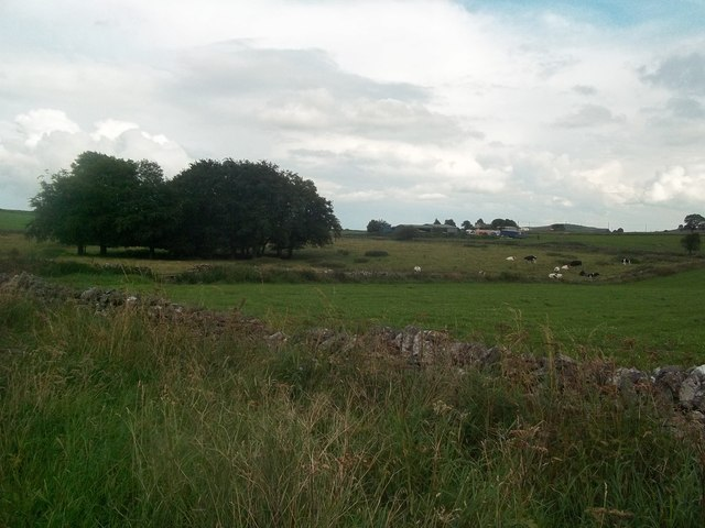 Haven Hoe Farm near Longcliffe