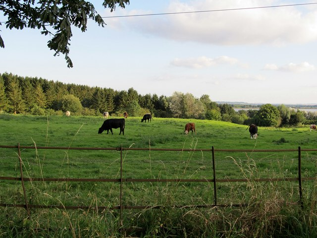 Thurlaston-Biggin Hall Lane