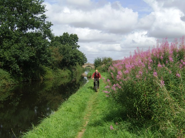 Shropshire Union towpath near Lower Hattons Bridge